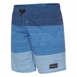 O'Neill Heren Surf Shorts Blue